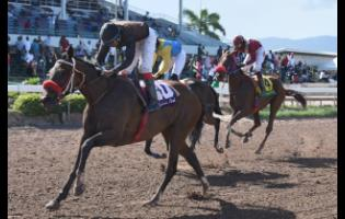WHATEVER wins the sixth race at Caymanas Park with Anthony Thomas aboard earlier this year.